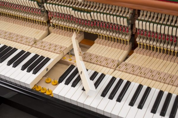 FEURICH-Mod.-122-Universal-hammers-keyboard-and-action-1024×683